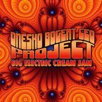 mike onesko - big electric cream jam (2009)