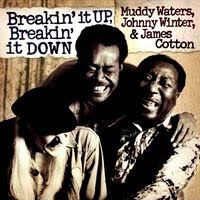 muddy waters - Breakin' It Up & Breakin' It Down (2003)