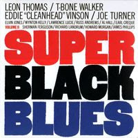 super black blues (2001) vol 2