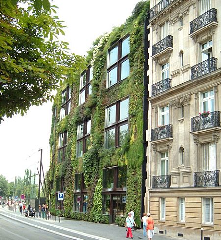 Landscape design how to build a green wall - Building a living wall ...