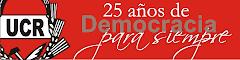 El Partido de la Democracia, en los 25 años de Democracia