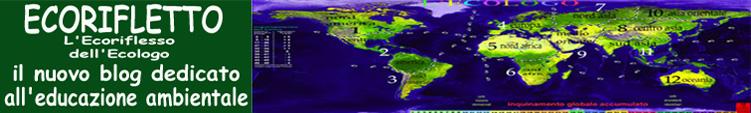 Ecorifletto: Analisi di funzionamento del sistema e creazione dello statuto