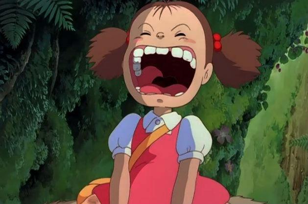 totoro anime