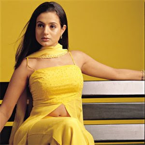 Amisha Patel navel breast