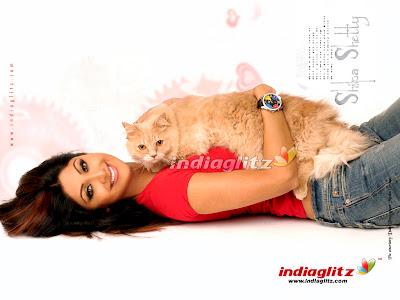 Shilpa Shetty, pussy, Shilpa, Shetty