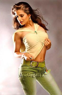 amisha patel breast, blouse, saree
