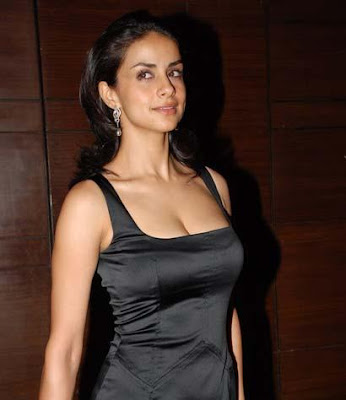 Gul Panag boobs