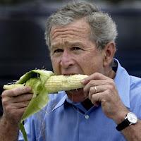 George Bush comiendo una mazorca de maíz