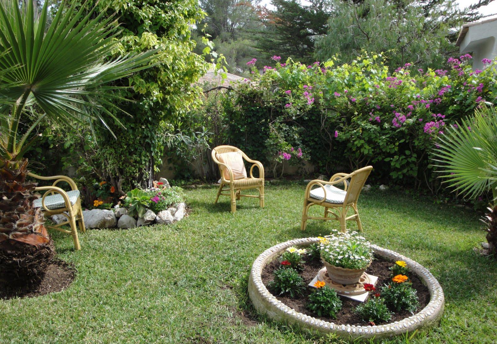 La mimosa de mi jardin un rinc ne mi jardin - Como arreglar mi jardin con poco dinero ...