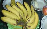 banana agustina