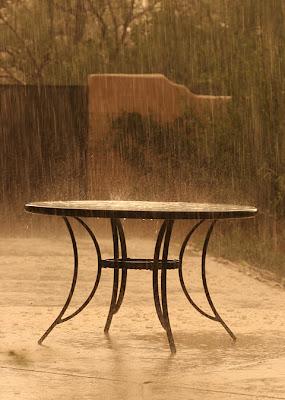 المطر رحمة ونعمة وآية من آيات بديع السموات والأرض.
