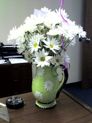 Daisies I got for my 41st Birthday