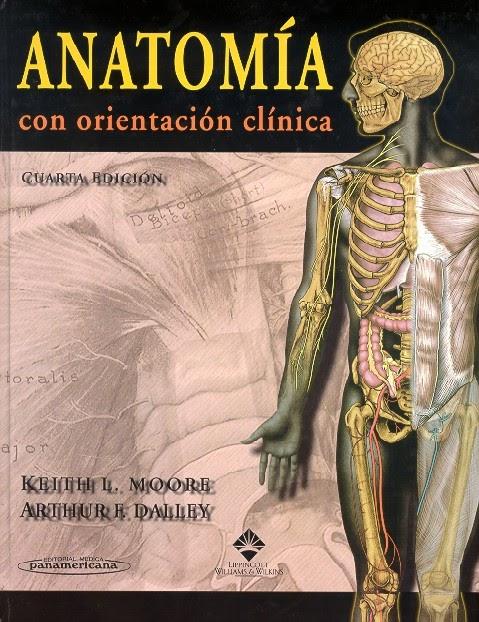 descargar moore anatomia 7 edicion pdf