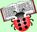 The Braillebug, a ladybug with six dots on its back on top of an open book of text