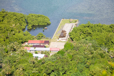 Picture from above of a school on the waterfront with jungle vegetation around