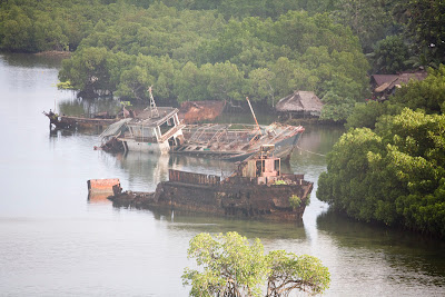 Three wrecked ships half-submerged in a harbor bordered by jungle.