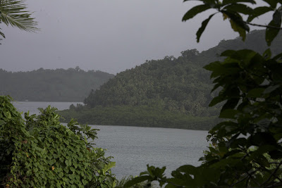 tropical island in Micronesia, water and jungle-covered shore in distance framed by vegetation