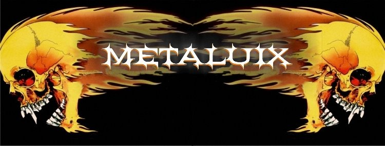 Metaluix