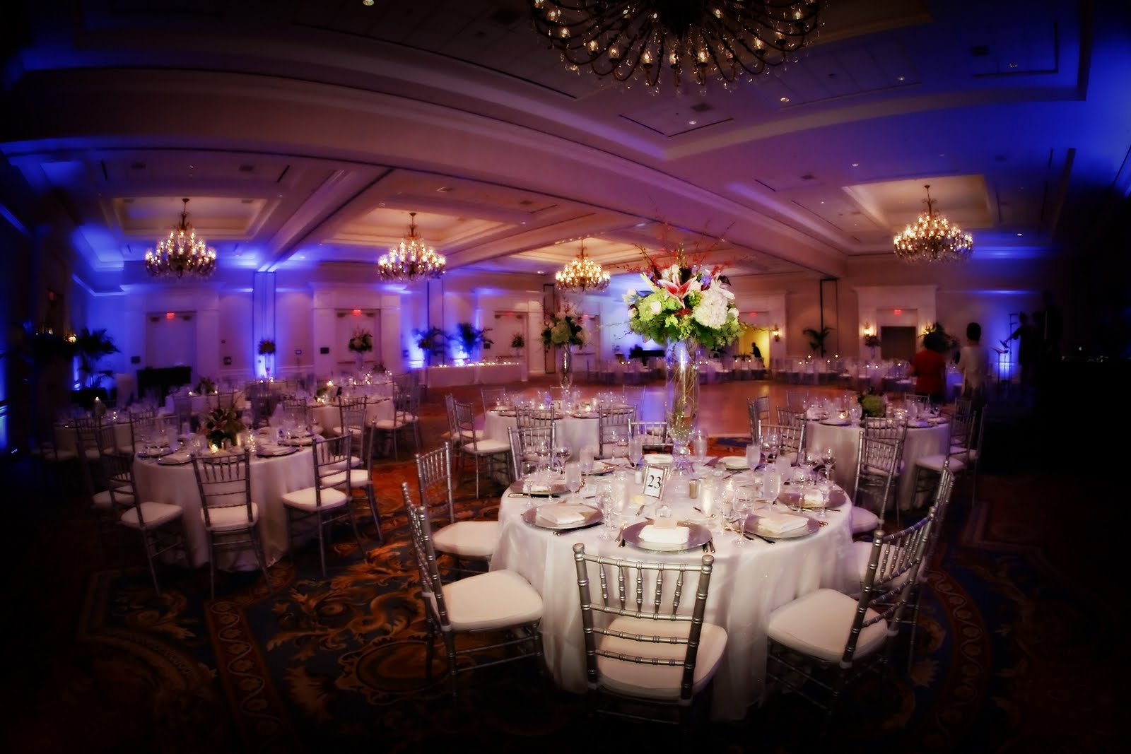 Chair Rentals Tampa Signature Event Rentals Sheer Elegance At The Tampa