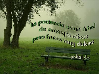 Frases de Alegria - frasescurtas.net