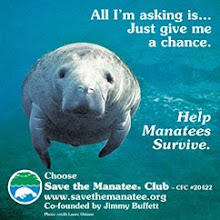 Adopt a manatee for a loved one: you just might save one life and greatly enrich another.