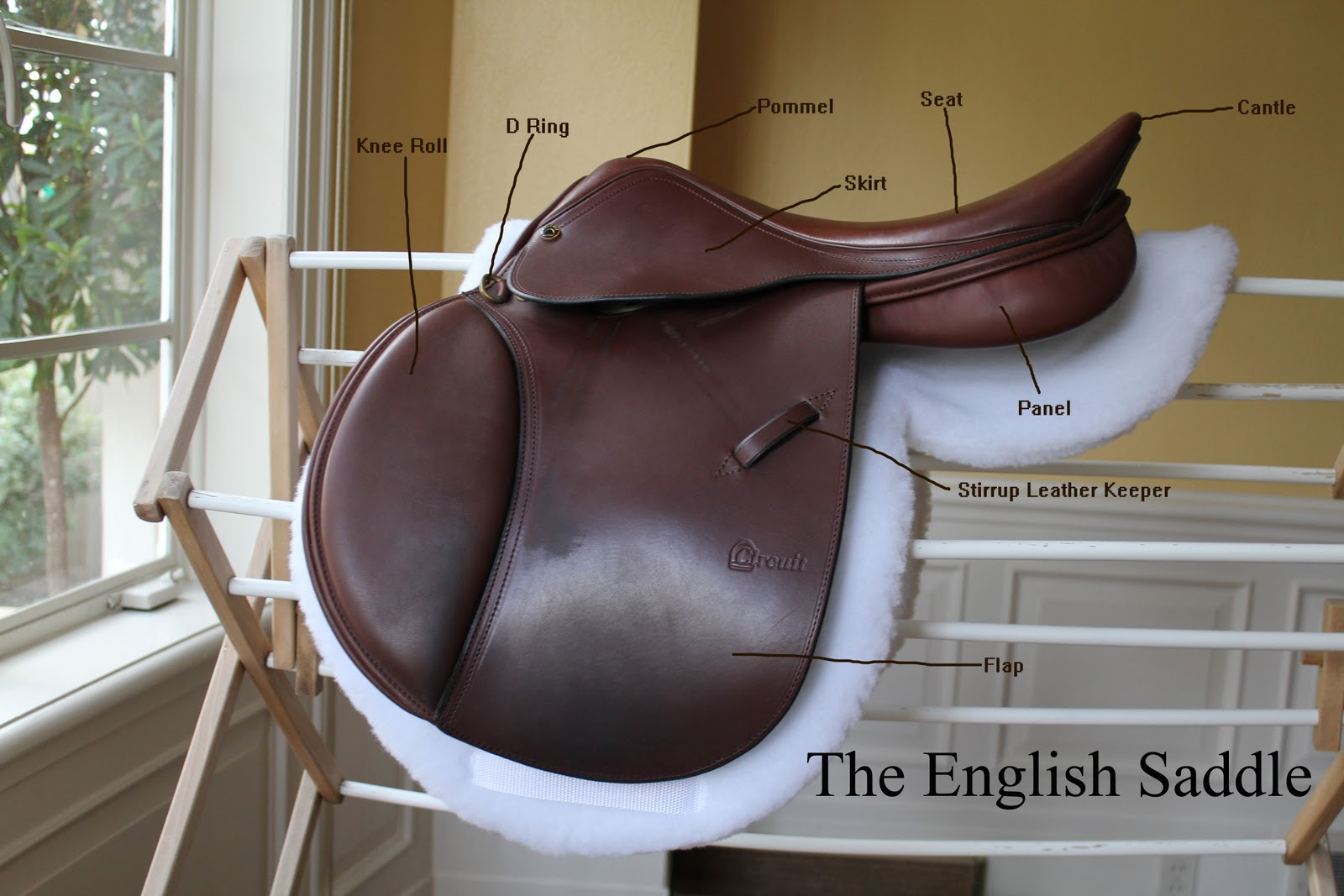 Eva's Office: Parts of a Saddle