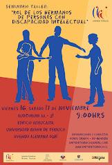 Seminario Rol de los Hermanos de personas con Discapacidad Intelectual