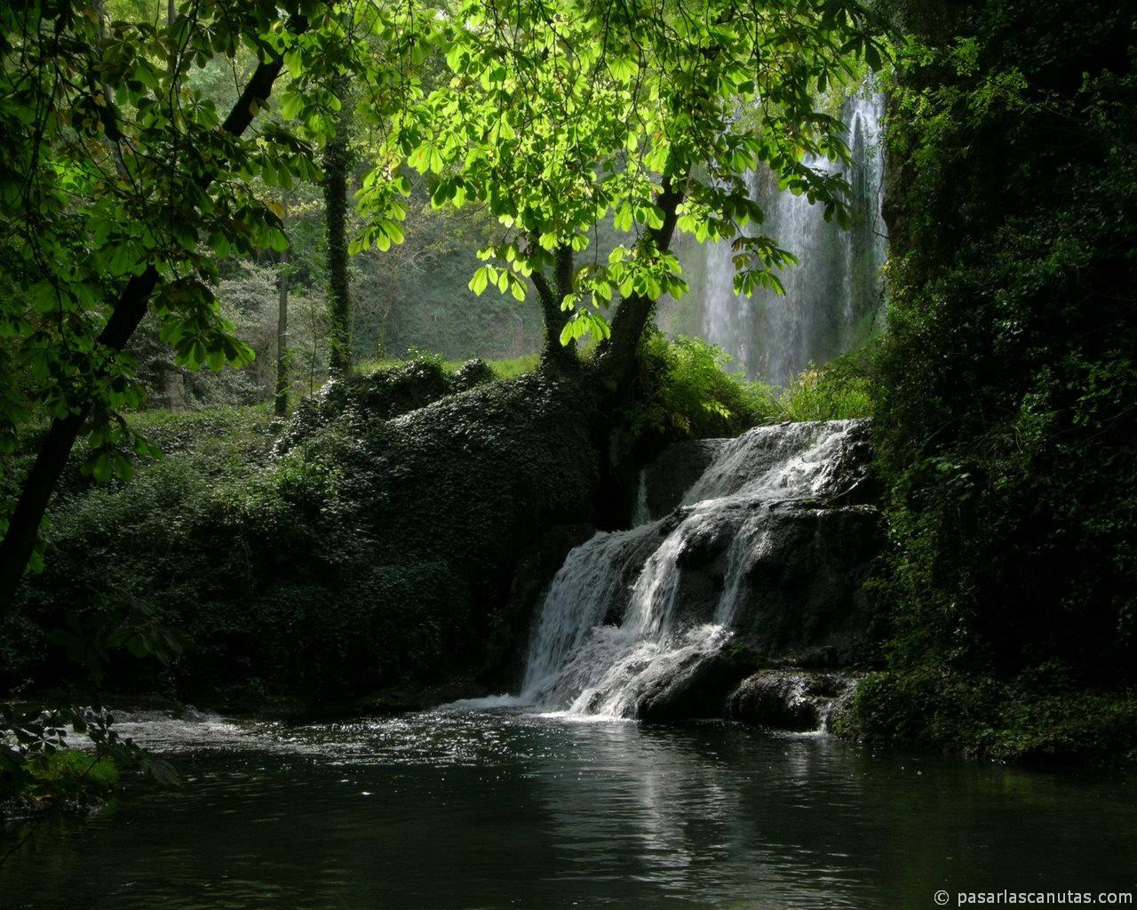 Photography Pemandangan Alam