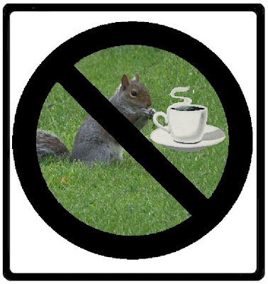 Squirrels Should Not Drink Coffee