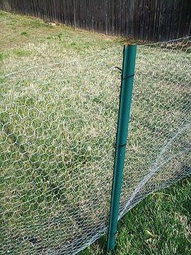 Make A Cheap Quick Chick Fence