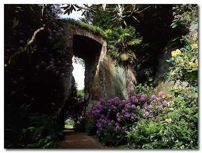 belsay hall quarry garden