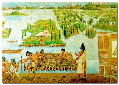I was watching a fascinating TV programme the other night which featured the canals and gardens of Xochimilco. The system, known as chinampas (floating gardens), of draining swamps and building up fields in the shallow Basin of Mexico lake beds was used to feed the population. The