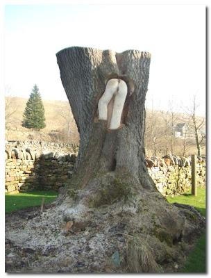 carved tree at falstone barns