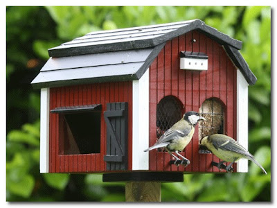 big barn bird house the french house