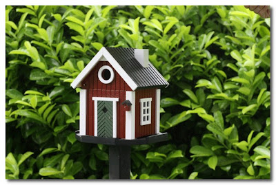 red cottage bird house the french house