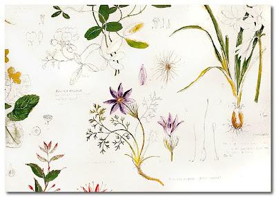 kevin dean artist illustrator textiles