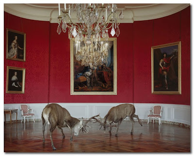 fables by Karen Knorr