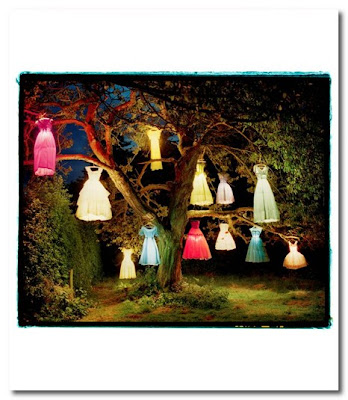 the dress lamp tree by tim walker