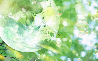 Bubble and Leaves