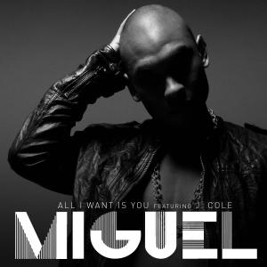 Use me miguel download all i want is you