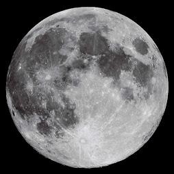 ¨*Luna¨*