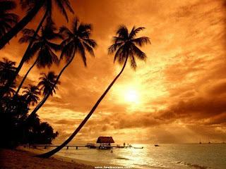 playa-tropical