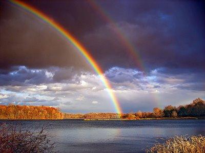 [Rainbow.jpg]
