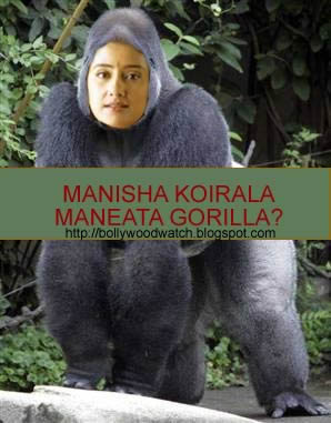 Serial Maneater, Nepalese Bollywood actress Manisha Koirala. A euphemism for MANEATER GORILLA?