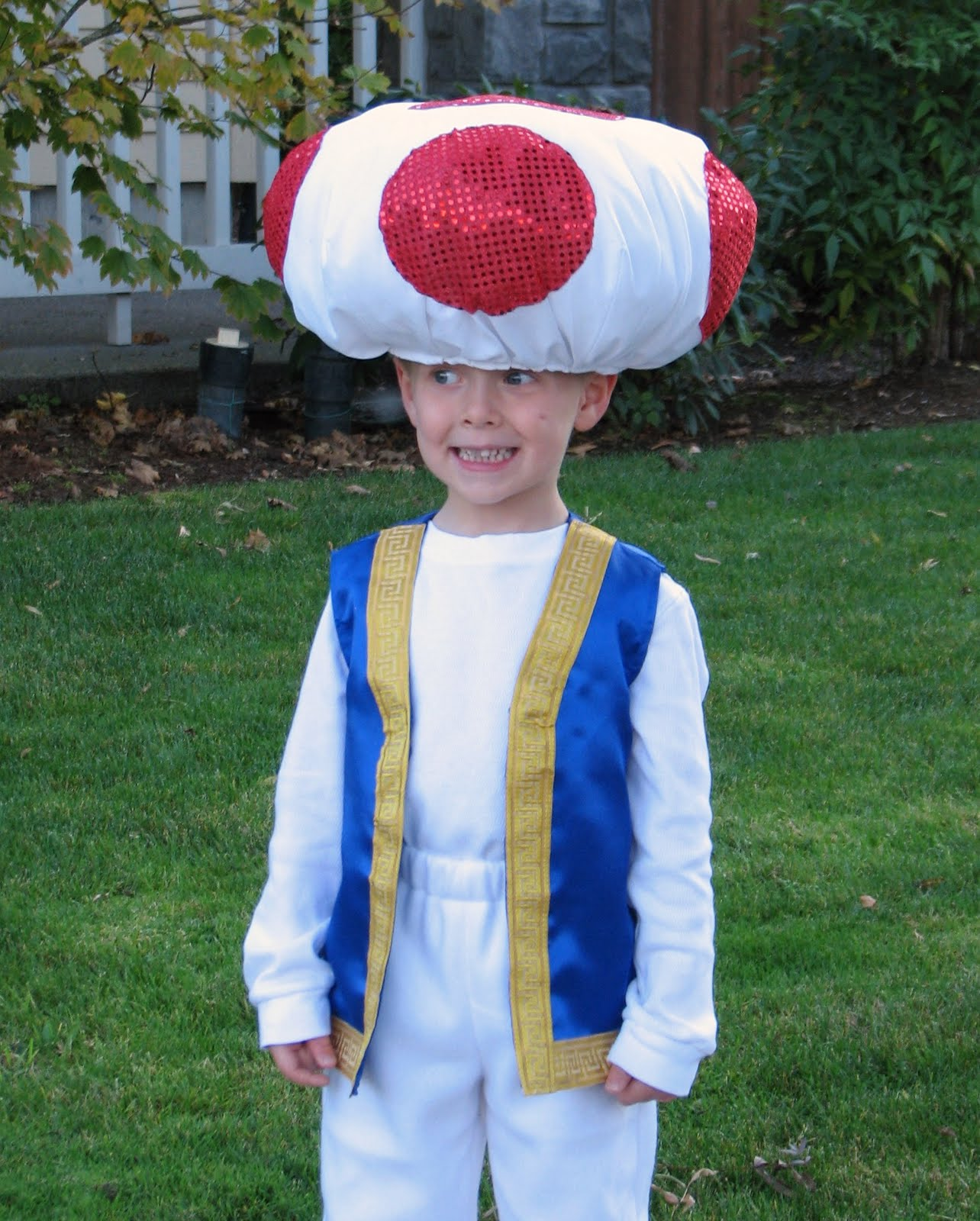 how to make a toad costume