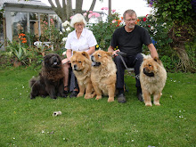 os og nogle af vores hunde