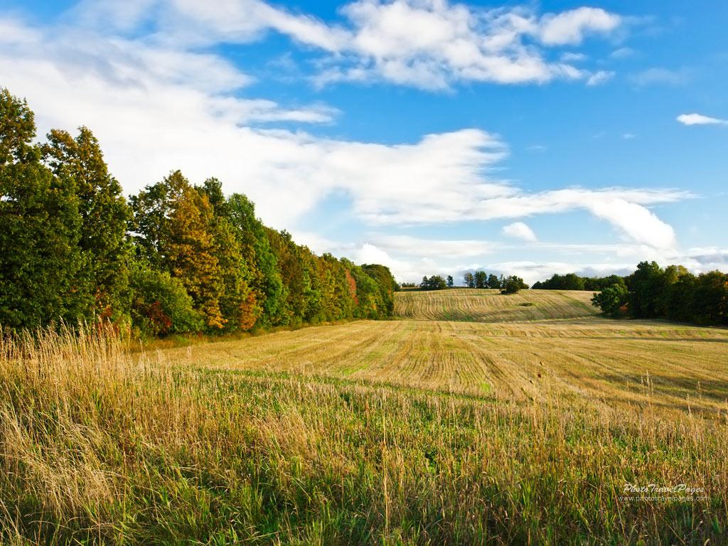 That 39 s the way i like it vast open fields - Open field wallpaper ...