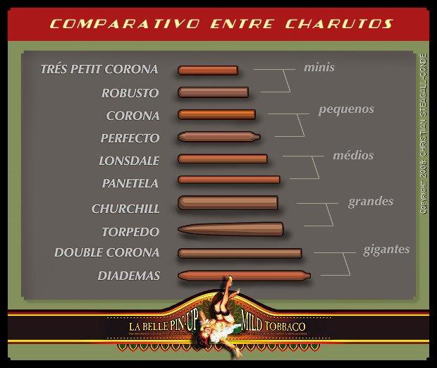CONFIRA as OPÇÕES MAIS FACILMENTE ENCONTRÁVEIS no UNIVERSO dos CHARUTOS