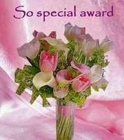 SO SPECIAL AWARD