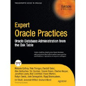 "OakTable Book ""Expert Oracle Practices"""